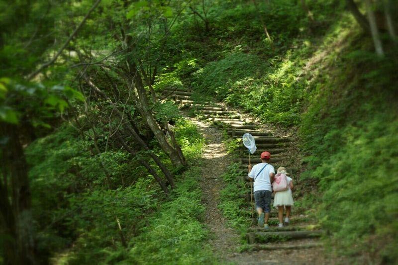 今日は運動会の代休ってヤツで小僧共が学校休んどる…。家でゴロゴロされても困るので、三男と娘を連れ出し山を探検!嫌がっていた三男も虫取り網一本でコロッと釣られてご機嫌に(笑)そろそろ疲れてきたぞ〜〜〜! Enjoying Life EyeEm Japan Taking Photos Nature 探検