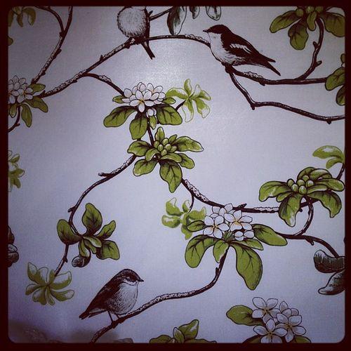 Anmano Angelislands Gardens wallpaper I like.