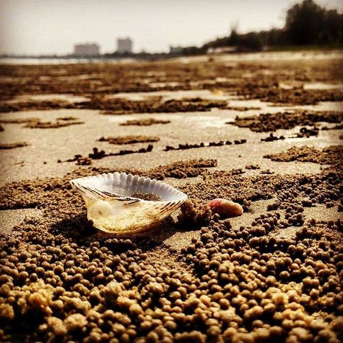 มุมเล็กๆบนหาดทรา