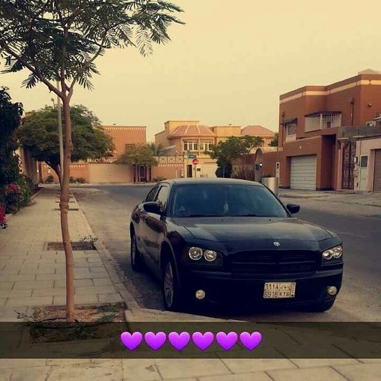 Dodgecharger    By Me ??