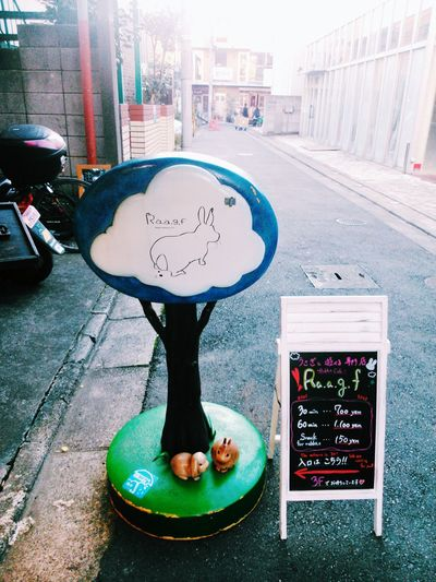 Travel Photography Vscocam Check This Out Japan Japan Photography Rabbit Caffee Shibuya Tokyo Cute
