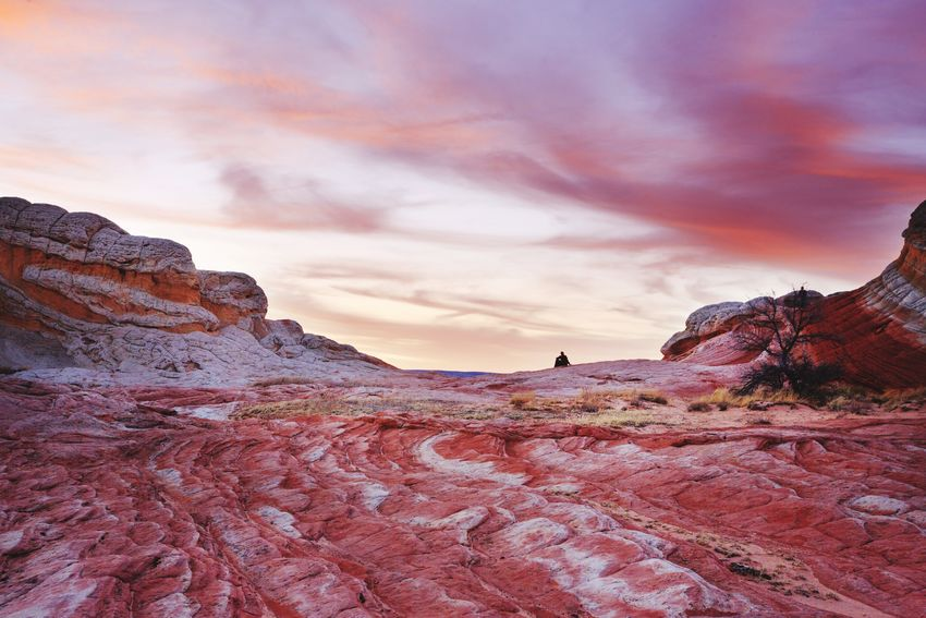Lost In The Landscape Sunset Scenics People Landscape Nature Geology White Pocket, Arizona Vermilion Cliffs National Monument Sky Travel Destinations Beauty In Nature Outdoors Person One Person Enjoy The Moment Arizona Sunsets Pink Sky