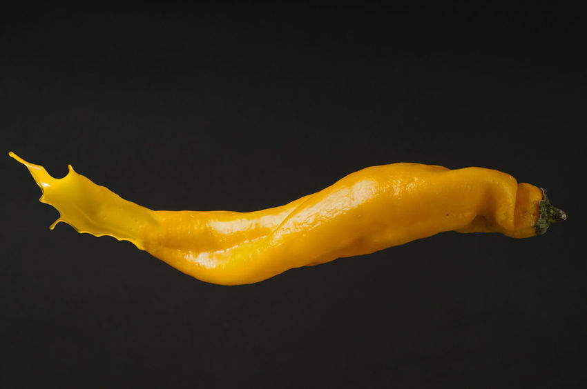 yellow pepper Yellow Pepper Black Background Close-up Copy Space Food Nature No People Pepper Single Object Still Life Studio Shot Vegetable Vegetarian Food Yellow