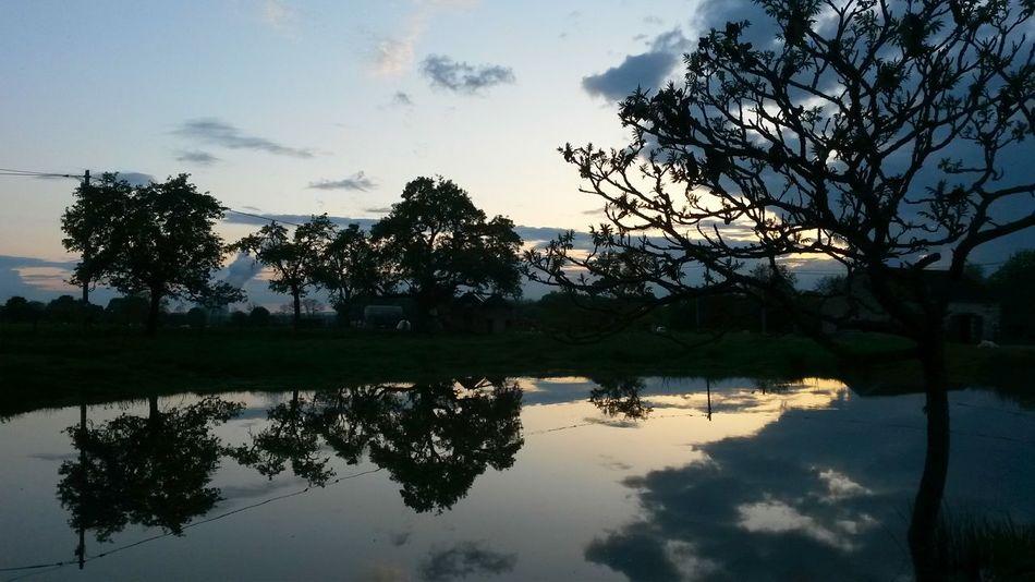 Taking Photos Enjoying Life Water Reflections Sunset Sunset #sun #clouds #skylovers #sky #nature #beautifulinnature #naturalbeauty #photography #landscape Sunset_collection Picoftheday Sunsetporn Beautiful Sunset Daydreaming