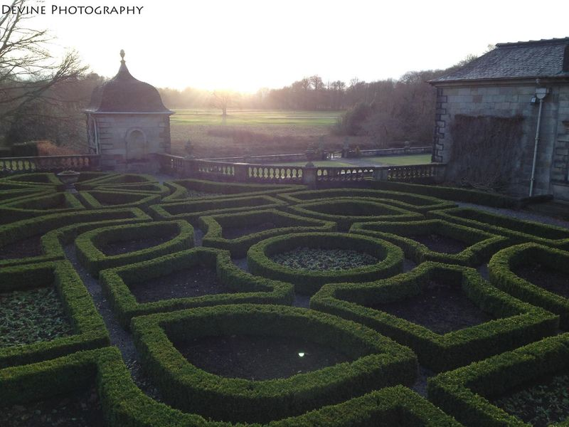Agriculture Farm Glasgow  Grass Green Color High Angle View Historic Maze PollokPark Rural Scene Sunset Learn & Shoot: Leading Lines