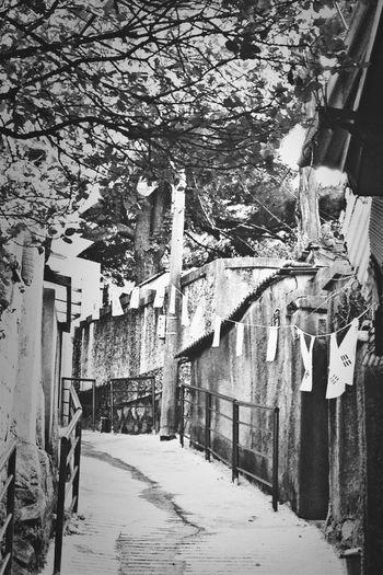 Korea Alleys..... Black & White Back Alleys Alleys Alleyways