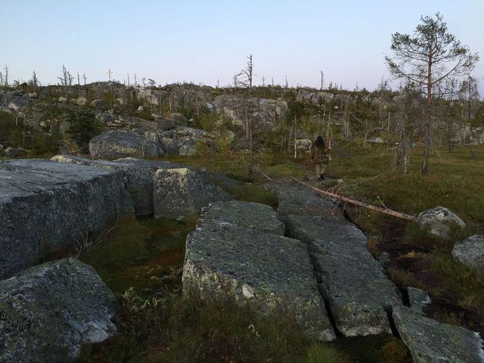 North Nature