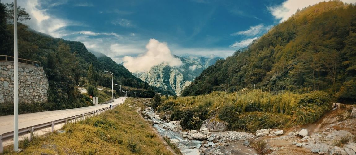 EyeEmNewHere Sky Cloud - Sky Tree Plant Scenics - Nature Transportation Tranquil Scene Beauty In Nature Nature Tranquility Mountain Road No People Day Non-urban Scene Landscape Environment The Way Forward Direction Outdoors