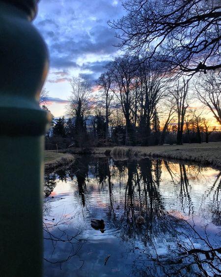 Potsdam Potsdam Park Sanssouci Sea Sundown