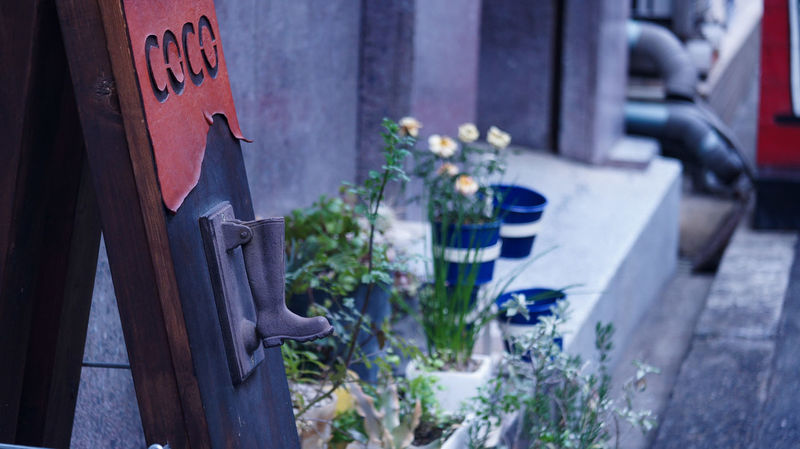 Plant Flower Sign City Life Streetphotograhy Cityscape INDUSTAR Vintage Lens Industar-50 3,5/50 Nex5 Winter