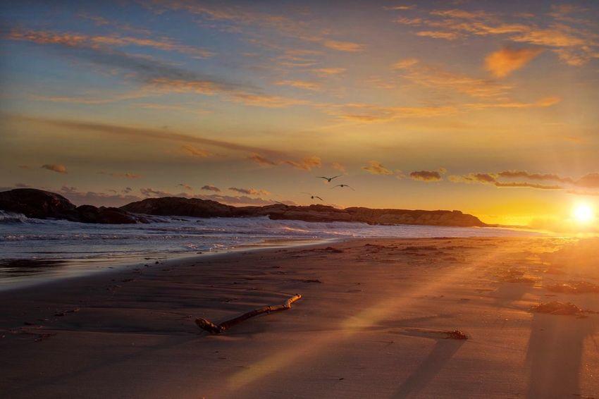 Sunset Sky Sea Beach Land Beauty In Nature Cloud - Sky Orange Color Scenics - Nature Sunlight No People Nature Horizon Over Water Idyllic Tranquility Tranquil Scene Sun Sand Water