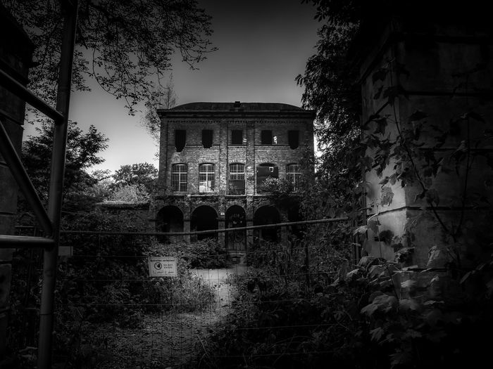 Lost Places Lostplaces Ruined Window Low Angle View Damaged Arch Sky Outdoors Day Old Growth The Past Building History Nature Abandoned No People Tree Building Exterior Built Structure Architecture Villa Oppenheim Geisterhaus Haunted House