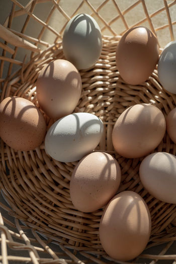 basket of natural brown and bluish chicken eggs from local farmer's market EGGS IN BASKET Farmers Market Natural Light Shadow And Light Basket Basket Of Eggs Brown Eggs Chicken Eggs Close-up Container Earth Tones Egg Eggs Food Food And Drink Fresh Eggs Indoors  Large Group Of Objects Natural Colors No People Still Life Sunlight And Shadow