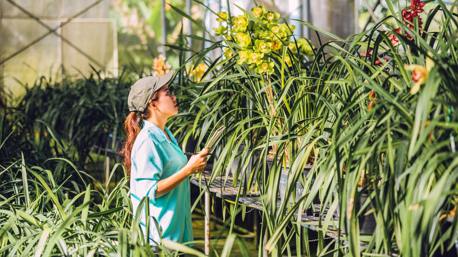 Side view of female researcher examining flowers in greenhouse