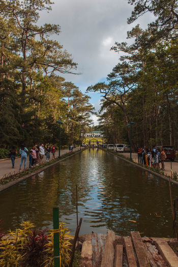 Group of people in canal along trees