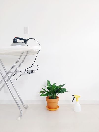 Plant Indoors  Potted Plant No People White Background Growth Wall - Building Feature Representation Motor Vehicle Flowering Plant Studio Shot Copy Space Green Color Leaf Nature White Color Flower Car Still Life Vase