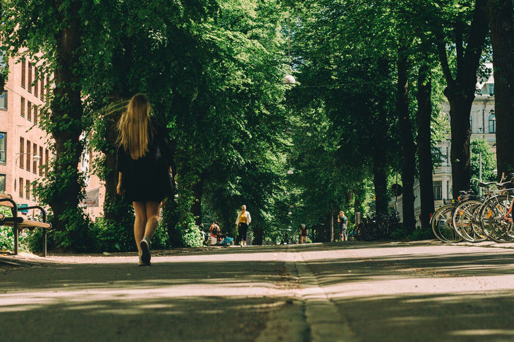 Rear view of woman walking on road by trees in city