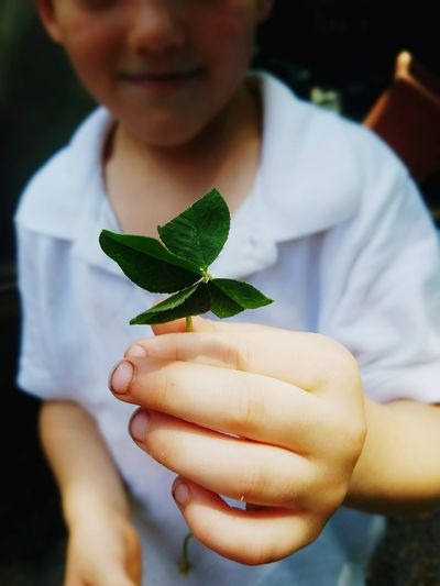 Midsection of boy holding leaves