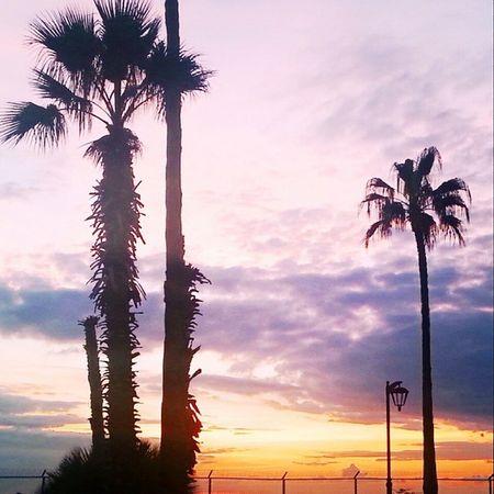 SunsetGalore Beirut Nothinglikeit ¤