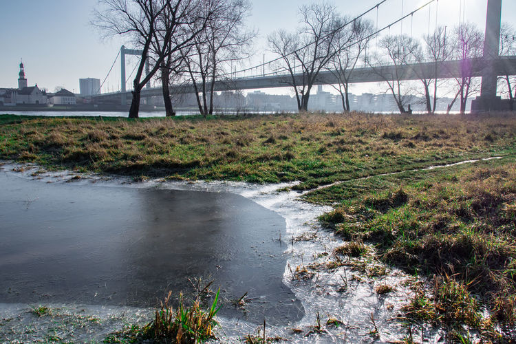 Tree Plant Water Nature Day No People Pollution Land Environment Tranquility Bare Tree Outdoors Environmental Issues Sky River Landscape Beauty In Nature Tranquil Scene Stream - Flowing Water Air Pollution Flowing Water Bridge - Man Made Structure Bridge Winter Ice