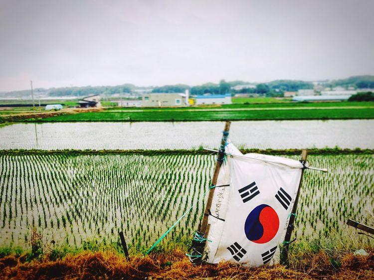 태극기 Outdoors Flag Korea Farm Landscape First Eyeem Photo