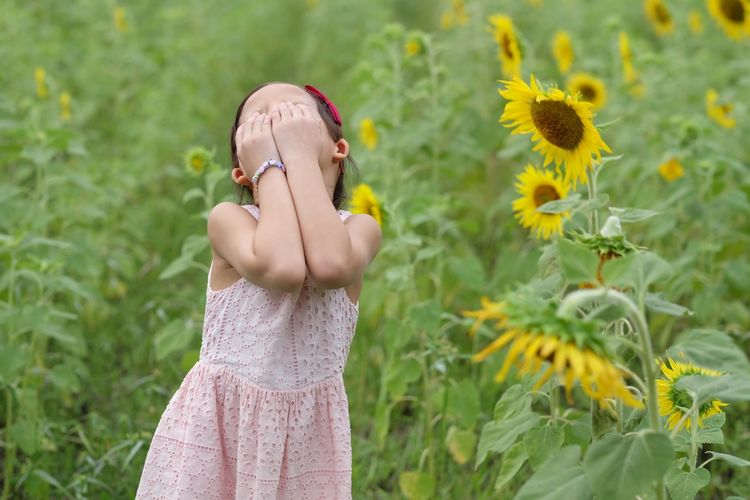 Cute girl with hands covering eyes standing in sunflower field
