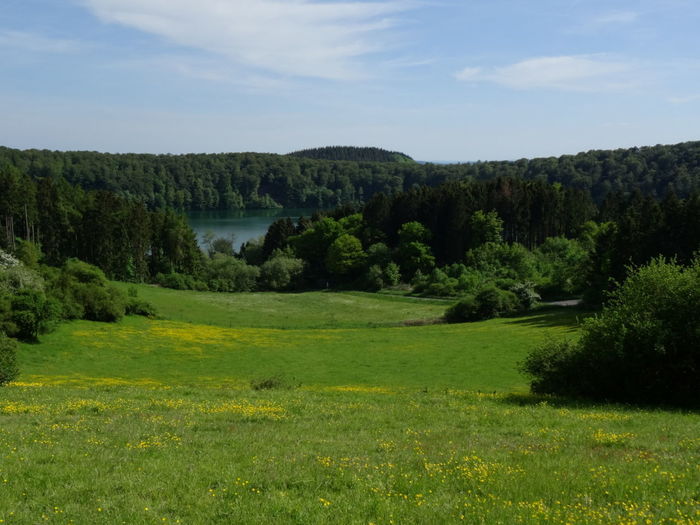 Peace And Quiet Beautiful Day Lovely Weather Quality Time Enjoying The Sun Landscape Water Germany Eifel Nature Nature_collection EyeEm Best Shots Relaxing Enjoying Life Nature Photography Taking Photos Nofilter Escaping Naturephotography