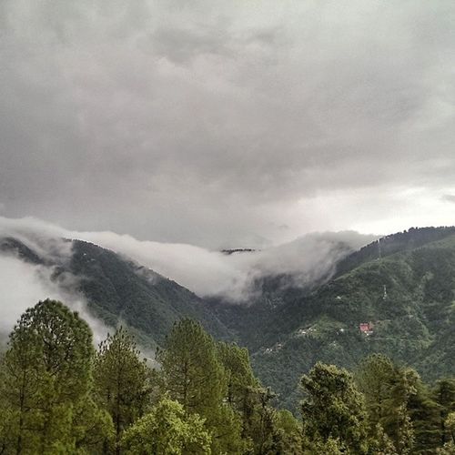 Smokey Clouds settling in the Mountains in anticipation of Rain ..... Cloud Greenery Nature Hills Weather Himachal Dalhousie Tree Indiapictures Indiatraveller Lonelyplanet Lpflyinghigh India Nofilter