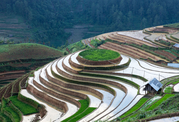High Angle View Of Terraced Fields