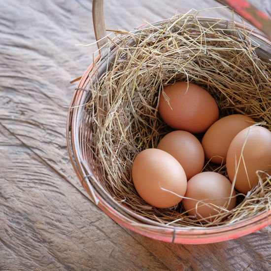 chicken eggs in basket Farm Freshness Nature Brown Chicken Eggs Close-up Day Egg Food Food And Drink Freshness Healthy Eating High Angle View Indoors  No People Organic Straw Wood - Material