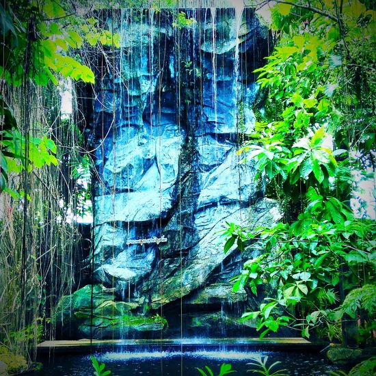 Day No People Tree Nature Summer Water Architecture Travel Destinations Beauty In Nature