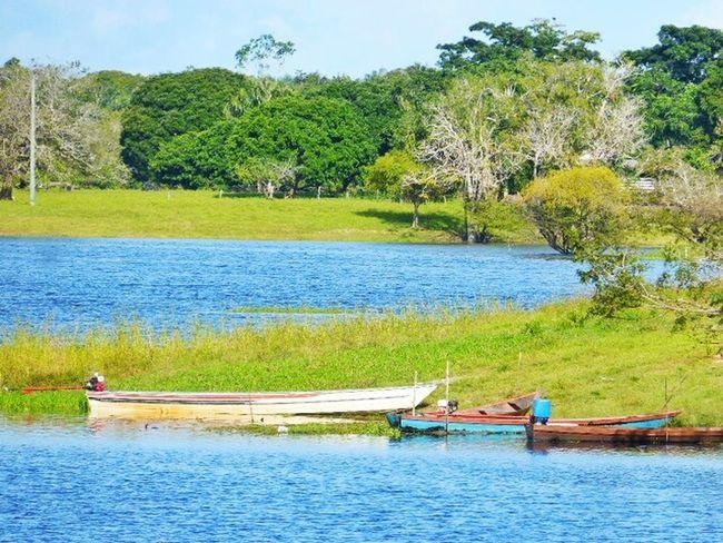 Itacoatiara Tazinho Amazonas