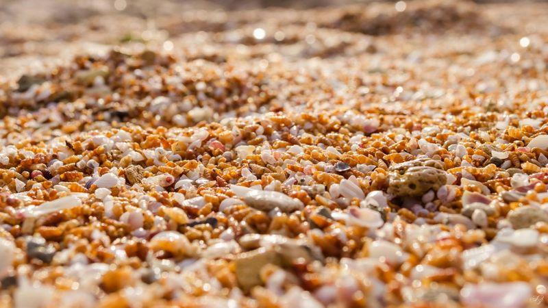 Sea Beach Shtormovoe