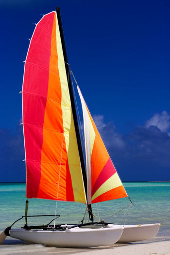 Colorful catamaran on the beach in the Caribbean with a blue sky. Sky Sea Water Nautical Vessel Transportation Nature Mode Of Transportation Horizon Over Water Day Blue Horizon Travel Beauty In Nature Multi Colored Outdoors Scenics - Nature Sport No People Sailing Sailboat