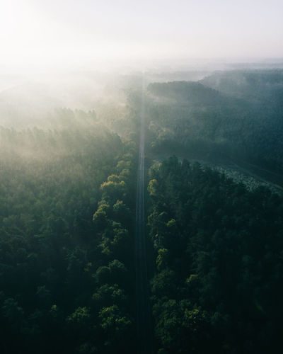thank you for being here ❤️ Aerial Shot Check This Out Drone  EyeEm Best Shots EyeEm Nature Lover Landscape_Collection Morning Morning Light Nature Nature Photography Aerial View Beauty In Nature Dronephotography Droneshot Fog Foggy Forest Landscape Landscape_photography Mist Nature Nature_collection Tree Lost In The Landscape Perspectives On Nature