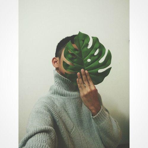 Green Leaf 🍂 Greens EyeEm Best Edits Jumper Hand Veins White Grey Fingers