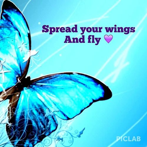 """""""Spread your wings and fly"""" editing pictures because it's fun and I'm bored... I edited this pic with PicLab @piclabapp Piclab"""