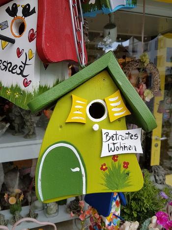 Betreuung Vogelhaus Lustig Birdhouse Wohnen Assistedliving