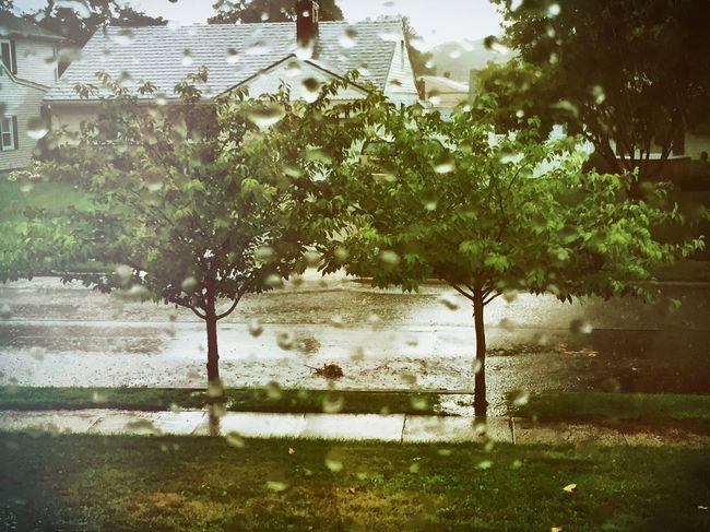 Waiting for the rainbow Storm Rain Summerain Rainy Days Raindrops ColorPalette TwoIsBetterThanOne