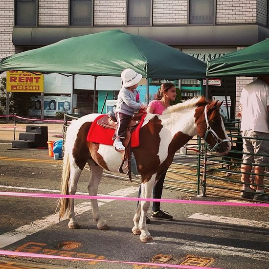 Merrick Street Fair !! N.Y.