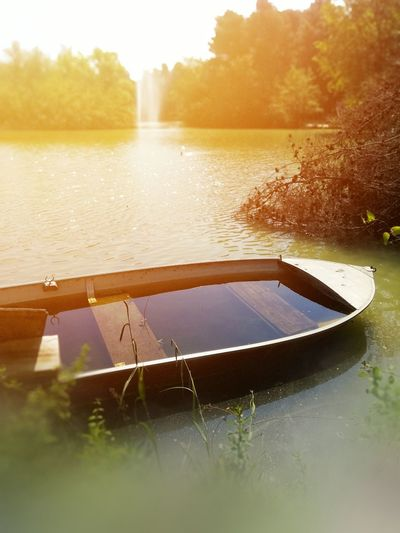 Small boat abandoned in the lake Boat Lake Lake View Abandoned Abandoned & Derelict Nature Nature Photography Vintage Sun Sunlight Sunset Tree Water Nautical Vessel Sunset Lake Sky Grass Floating On Water Water Lily Lily Pad Streaming Shining Floating Pool Raft Standing Water Calm Countryside