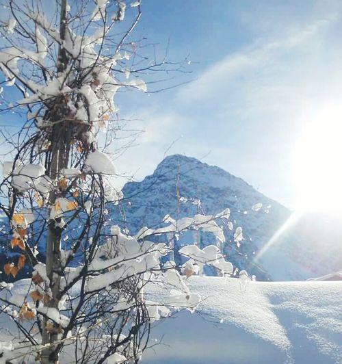 Cold Winter ❄⛄ Sun Light Switzerlandalps