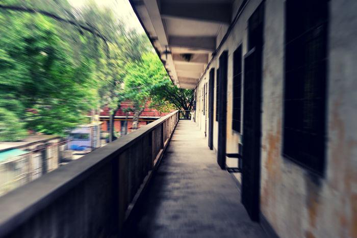 老旧宿舍楼的走廊。 Corridor Taking Photos Old Buildings Eye4photography  Sunshine