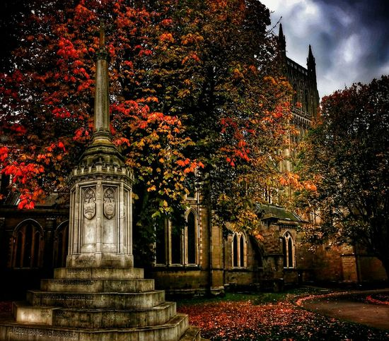'At the Cenotaph' ...Today I stood and watched the leaves break final bonds with life, and fall around the empty cenotaph. ~ They did not fall en masse, but one by one descending. As representing each, a silent tribute to some soul, lost in a half forgotten conflict from another age. ~ Ben's Poetry My Thoughts My Feelings Worcester Cathedral I Love My City Malephotographerofthemonth Autumn🍁🍁🍁 EyeEm Best Edits Visual Poetry Tadaa Community