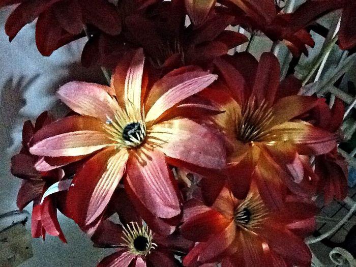 Thespians Nuartapp ECE131 Goldenrectangle