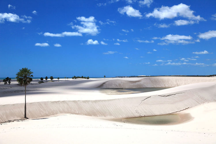 Dunes on the