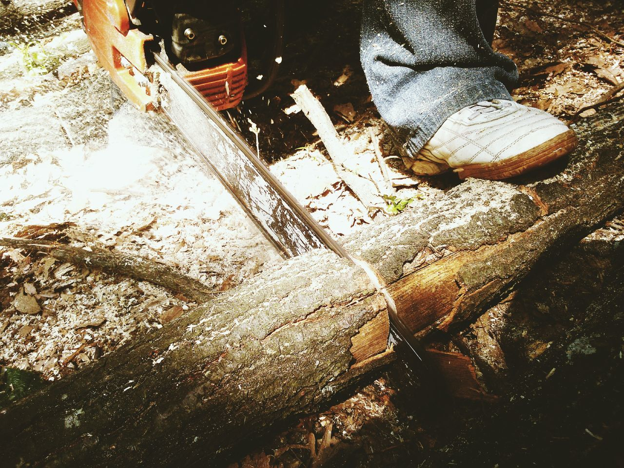 High angle view of person cutting wood with chainsaw