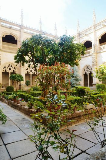 Toledo Toledo SPAIN Water Flower Tree Architecture Building Exterior Sky Built Structure Growing Blooming Ornamental Garden Formal Garden Toadstool Stalk Courtyard  Fountain Fungus Garden Path Drinking Fountain Topiary Botanical Garden
