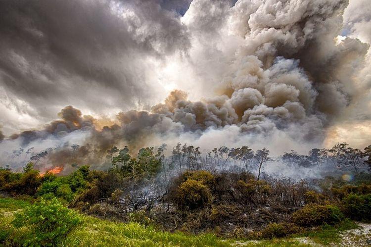Fire Hobesound Taxdollarsatwork EyeEm Best Shots - HDR