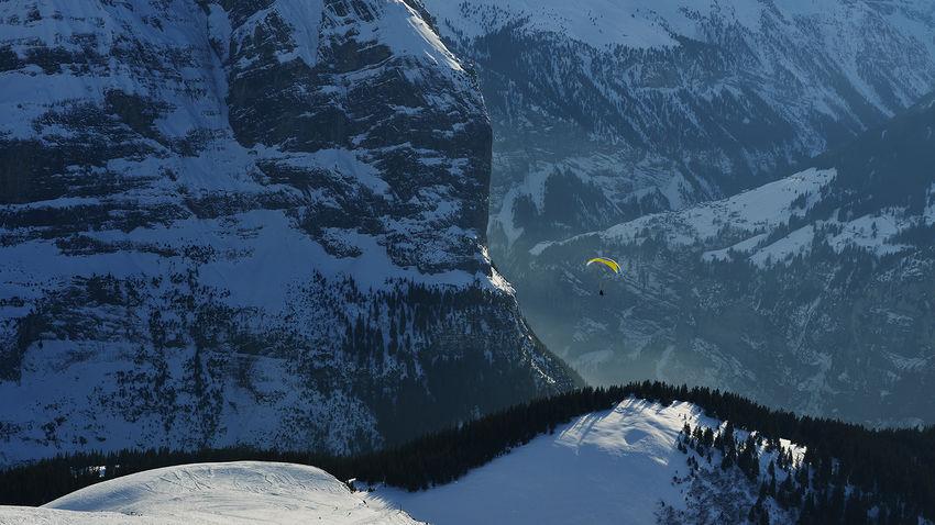 Kleine Scheidegg, above Grindelwald, Switzerland Alps Bernese Oberland Cold Cold Temperature Covering Frozen Grindelwald Kleine Scheidegg Landscape Mountain Mountain Range Season  Snow Snow Covered Snowcapped Snowcapped Mountain Swiss Switzerland Weather Wengen White Winter